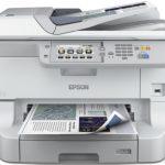 Epson Inkjet: la linea 2014